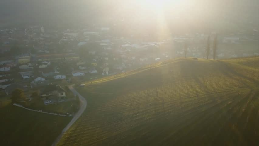 Aerial: Flying over hills filled with wine plantages at beautiful autumn sunset. Filming Slovenian wine making countryside with drone. | Shutterstock HD Video #1025970953