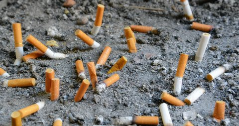 SINGAPORE - CIRCA DEC 2016: Cigarette butts of varying brands. discarded in a designated receptacle. 5k video