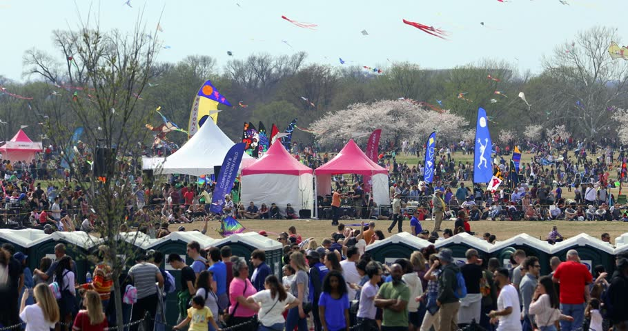 Washington, D.C. / USA - March 30, 2019: Thousands of people gather on the National Mall to fly kites during the annual Blossom Kite Festival, which takes place when the cherry blossom trees bloom.