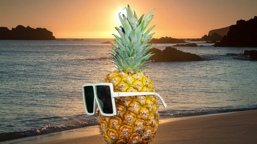 Cool mr pineapple head with shades spinning with a beach sunset background | Shutterstock HD Video #1027176323