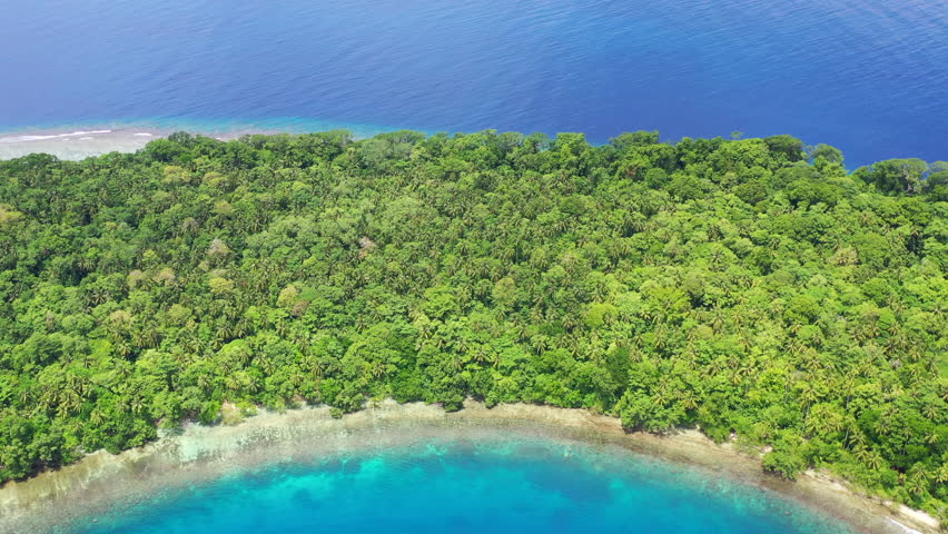 A remote island is covered by lush forest off the coast of New Britain, Papua New Guinea. This tropical Melanesian region is known for its extraordinary marine biodiversity. | Shutterstock HD Video #1027383503