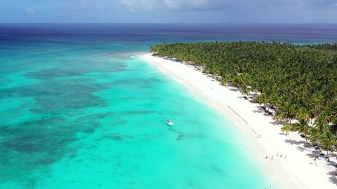 Aerial view from drone on tropical island with coconut palm trees and turquoise caribbean sea. Saona Island. Dominican Republic