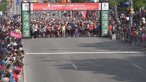 Ottawa 2015  The Tamarack Ottawa Race Weekend 5K-10K, kids, and  marathon races.