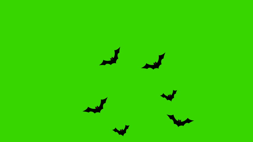 Cartoon Bats Flying From One Side to Another on a Green Screen | Shutterstock HD Video #1027552523