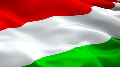 Hungarian flag Closeup 1080p Full HD 1920X1080 footage video waving in wind. National Budapest 3d Hungarian flag waving. Sign of Hungary seamless loop animation. Hungarian flag HD resolution Backgroun