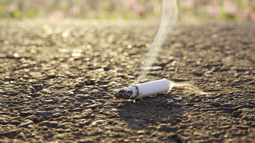 lit tobacco on the road