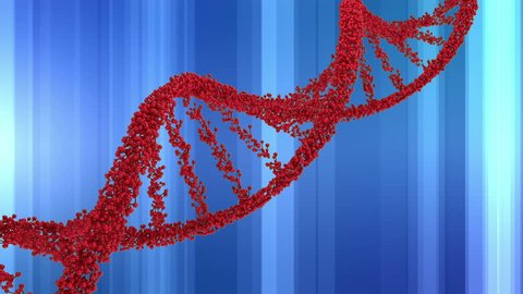 Digitally generated animation of DNA double helix model in red in a blue line pattern background