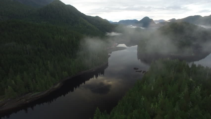 Aerial: Dark River Surrounded By Thick Forests With Mountains In Background in Mackenzie Sound, British Columbia