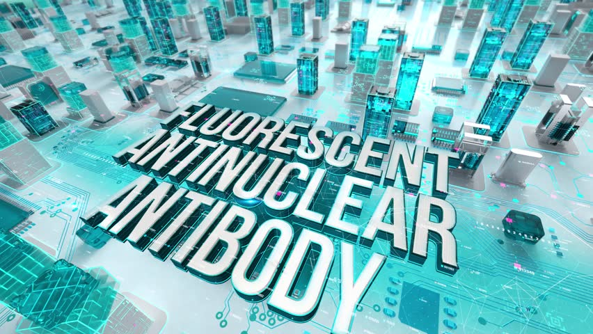 Fluorescent Antinuclear Antibody with medical digital technology concept