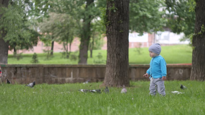 little handsome boy in blue jacket runs across the lawn to the birds in the city park with a pond on the background in slow motion 4K video #1028268293