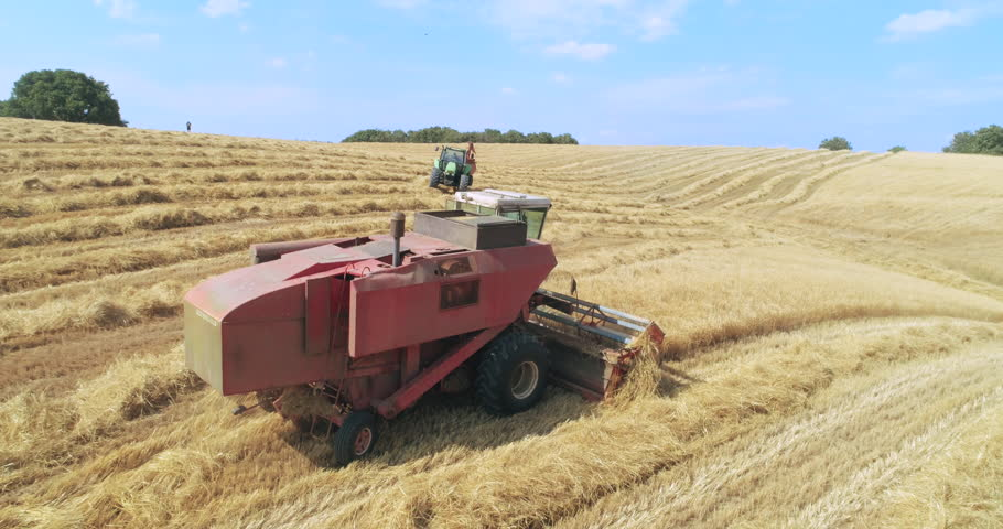 Thresher farming in golden wheat field. Aerial view of threshing machine working in Italy. 14