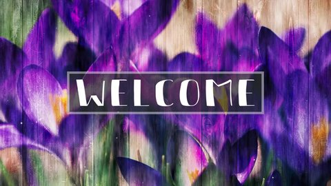 Welcome motion loop for mothers day events featuring purple spring flowers
