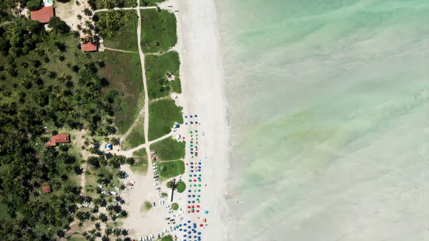 Aerial Top View: Amazing Tropical White Sand Beach by the Bright Blue Ocean in Porto de Galinhas, Brazil | Shutterstock HD Video #1029047453