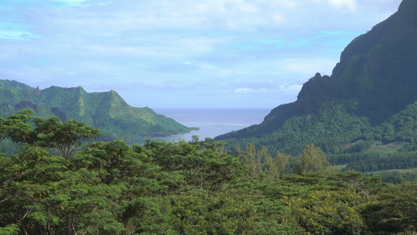 Belvedere lookout, Cooks Bay, Opunohu Bay, Mt. Rotui, Moorea, French Polynesia #1030156913