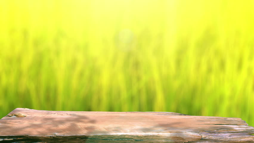 table top background hd. table top and blur nature of background - hd stock footage clip hd o