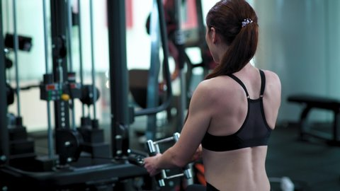 bizeps übungen gym