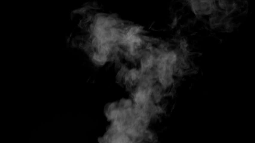 The water spray steam or smoke motion isolated on black background,slow motion movement #1031720933