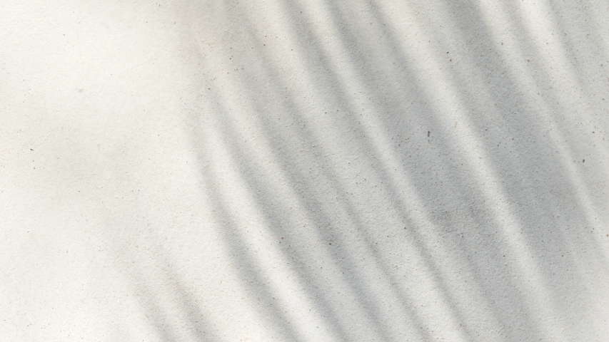 Abstract background texture of shadows palm leaves on a concrete | Shutterstock HD Video #1031831663
