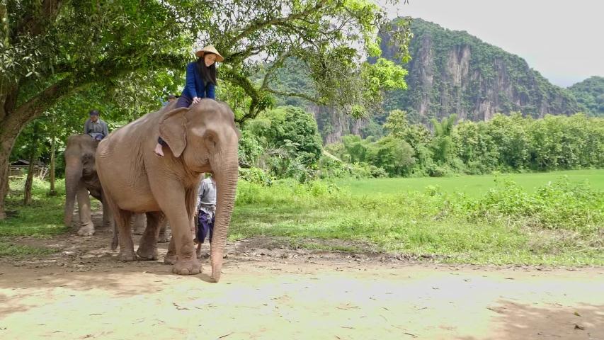 Naked girl riding elephant — img 14