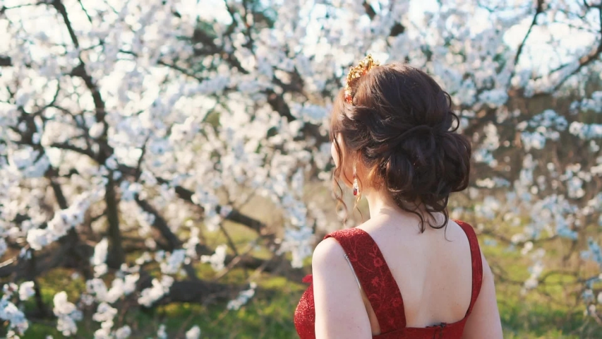 Pretty woman standing with her back to camera, posing in chic expensive red dress alone in flowering forest, lady with dark braided collected hair and open back, image for holiday for girl, no face   Shutterstock HD Video #1032346823