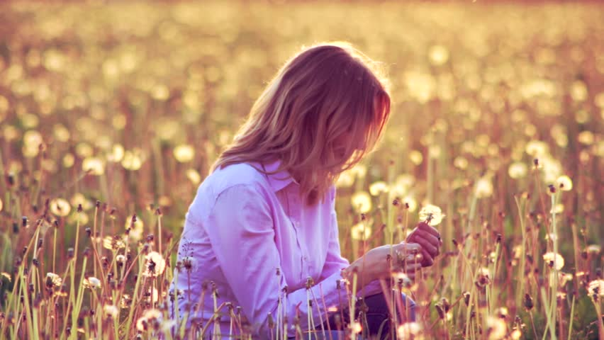 The girl picks a dandelion in a field and blows away with it fuzzes | Shutterstock HD Video #10329773