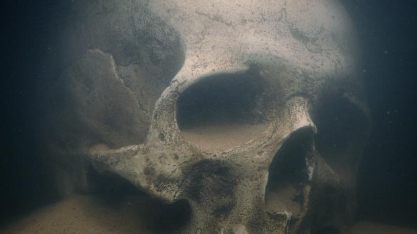 Torch Lights Up Skull Underwater | Shutterstock HD Video #1033185953
