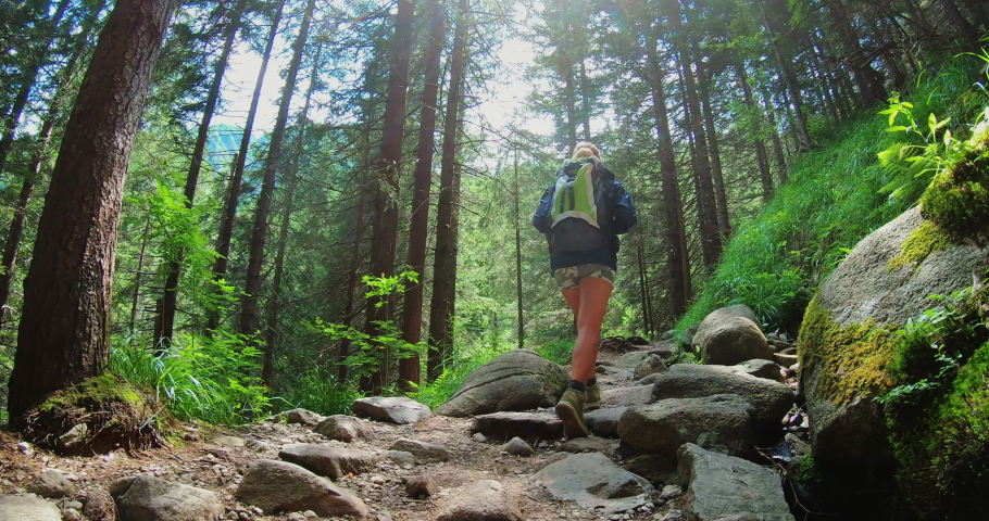Aerial shot of a carefree woman is trekking in the forest in the mountains surrounded by nature in a magical, relaxing and green place. #1033369073