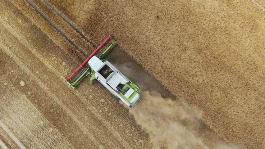 Combine harvester - aerial view drone shot of one of the biggest combine harvester at harvesting golden ripe wheat field in germany   Shutterstock HD Video #1035000713