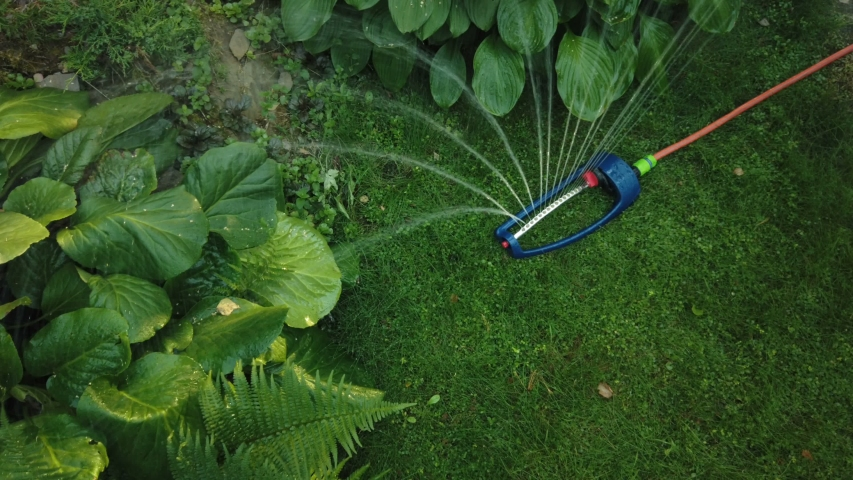 Lawn sprinkler spaying water over green grass.   Shutterstock HD Video #1035206033