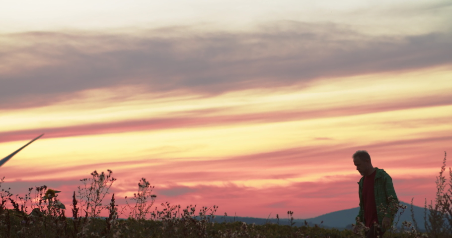 Excited man walking through greenland in the counrtside watching large wind turbines spinning in pink sunset sky. Beautiful summer scenery.   Shutterstock HD Video #1035557603