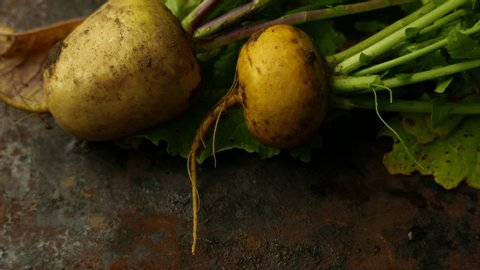 Turnip with haulm on the black rustic background.