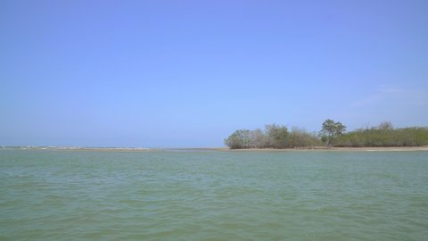 Shipping near Mangrove forest in South America, North of Peru near Puerto Pizarro