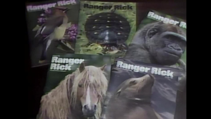 CIRCA 1980s - The founder of Ranger Rick magazine discusses the publication's aims, while editors and artists are seen working on an issue.   Shutterstock HD Video #1036754513