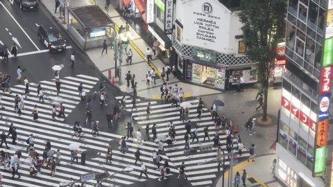 TOKYO, JAPAN - June 7, 2019: Pedestrians crosswalk at Kabukicho district in Tokyo, Japan. Tokyo crowd is walking on the street at night. Waiting for the traffic signal. Video Timelapse.