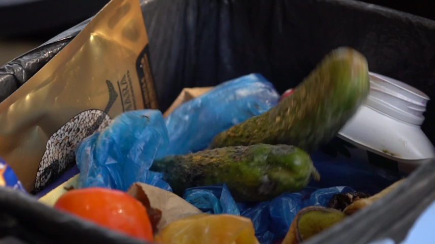 Housewife throws rotten vegetables in the trash. Reducing food loss and waste. Food waste or loss is food that is wasted or lost uneaten | Shutterstock HD Video #1038414653