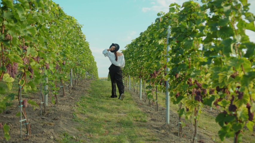 Beautiful female tourist with wineglass walking on eco plantation of grapes exploring inspiring vineyard on summer vacation. | Shutterstock HD Video #1038486023