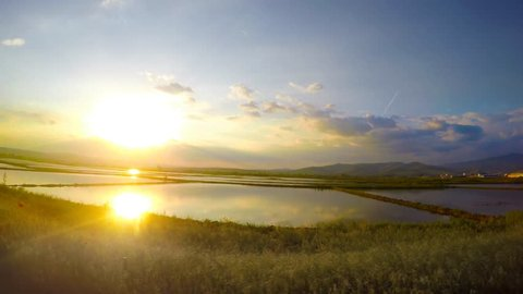 Sport Car Drive Fast on the country road along Rice fields at sunset with reflection in the water. UHD 4K stock footage