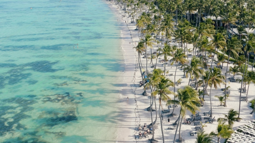 Amazing aerial view of a wonderful exotic tropical caribbean beach in Punta Cana, Dominican Republic | Shutterstock HD Video #1041417133