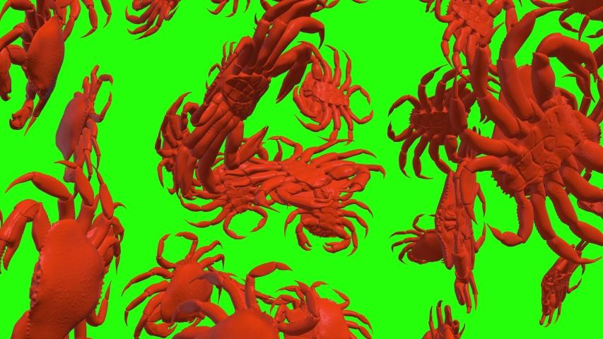 Green screen raw crabs raw seafood raw green screen crustacean crabs crustacean seafood crustacean green screen falling crabs falling seafood falling green screen animation crabs animation seafood 3d