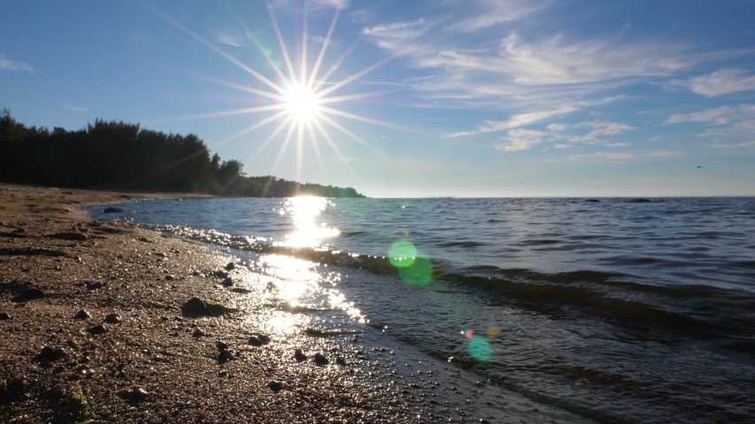 Beautiful sunny view of lake, slow motion shot. Small waves softly wash sand, bright low sun star in sky. Sparkling light reflection on water, some insects in air | Shutterstock HD Video #1045012303