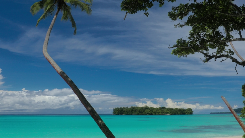 Port Orly sandy beach with palm trees, Espiritu Santo Island, Vanuatu. | Shutterstock HD Video #1045434613