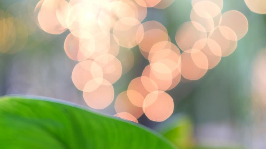 Light bokeh background, abstract, blur background  | Shutterstock HD Video #1045718713