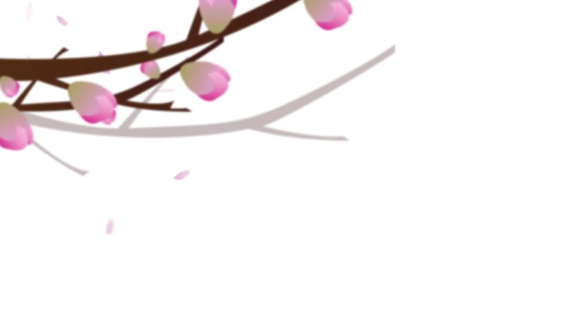 Sakura falling foliage for Intro logo screensaver spring alfa mask   Shutterstock HD Video #1048119553