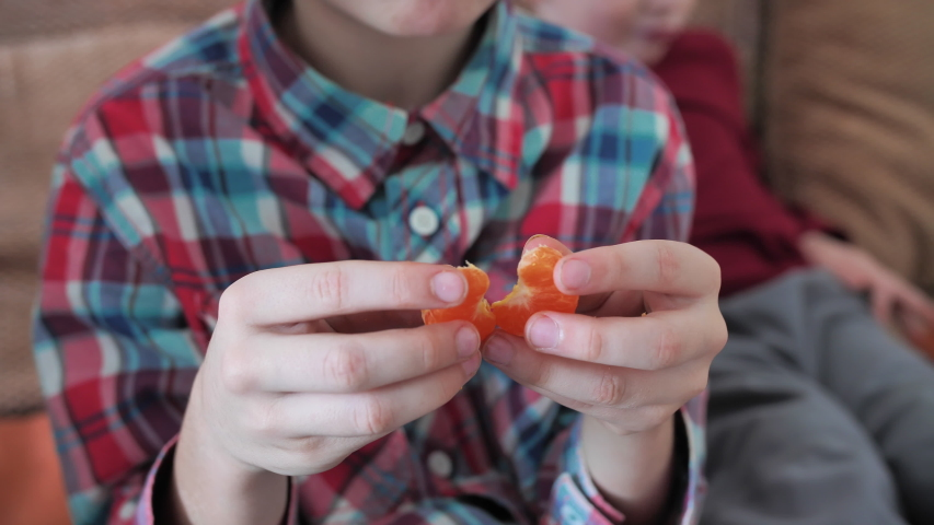 Brother and sister eat tangerines at home. | Shutterstock HD Video #1049481103