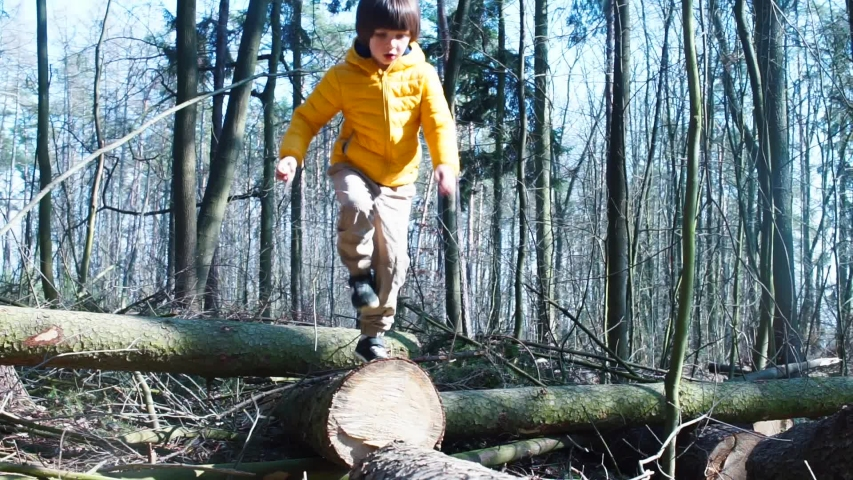A boy runs along the logs of trees in the forest. Walk in the fresh air, social isolation. Healthy lifestyle. Home school in the forest. | Shutterstock HD Video #1049760613