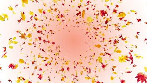 Flying leaves autumn.