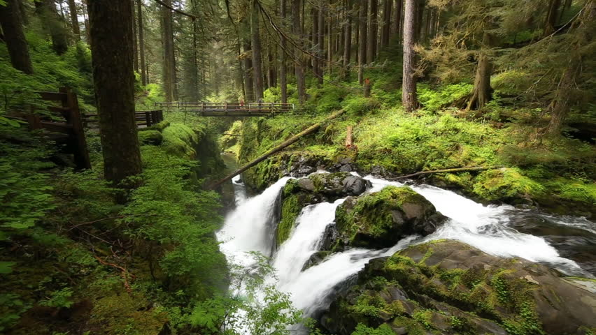 Sol Duc Falls in Olympic National Park, Washington State, USA