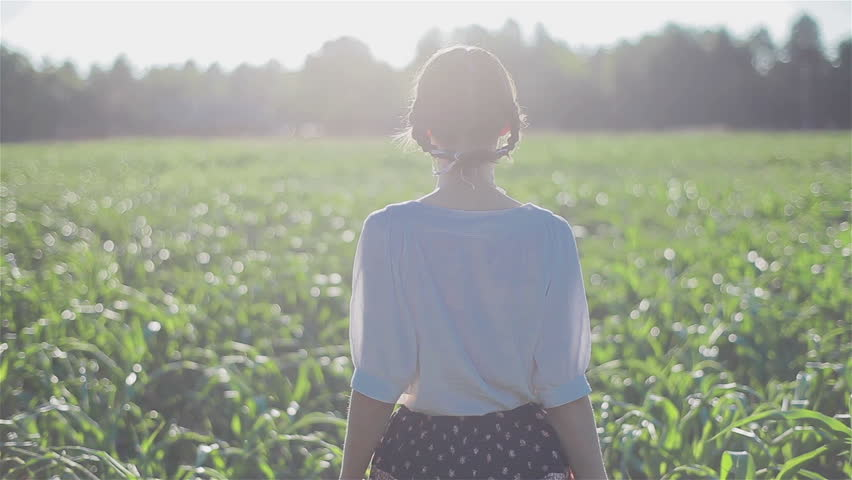Attractive young woman walks through a summer cornfield gently touching green leaves of growing maize plants  | Shutterstock HD Video #10843661