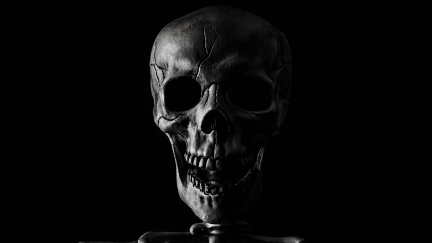 Skull Bilder Kostenlos