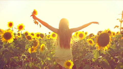 Beauty girl running on yellow sunflower field, raising hands. Freedom concept. Happy woman outdoors. Harvest. Sunflowers field in sunset. Slow motion 240 fps. Slowmo. 1080p full HD video footage